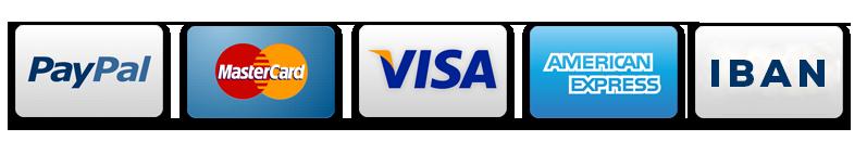 wems agentur kreditkarte visa mastercard amex iban - Wordpress Sicherheit und Wordpress Wartungsdienst durch die Agentur WEMS